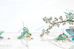 Preying Mantis Party