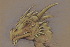 Yellow Dragon Sketch