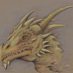 Yellow Dragon Sketch